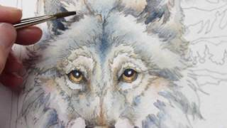 How To Paint A Wolf